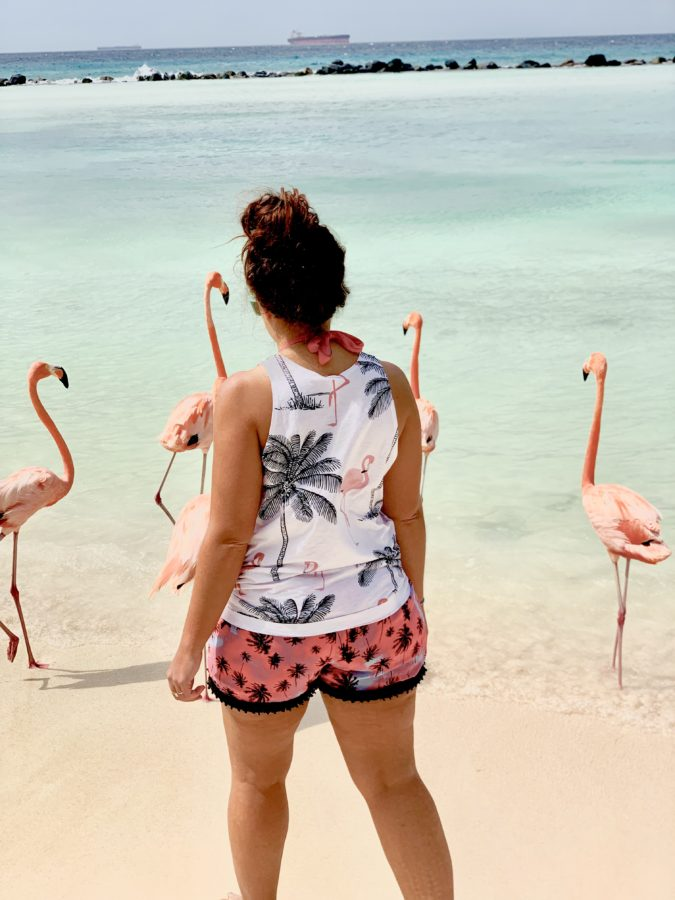 Girl walking with 4 flamingos in the ocean