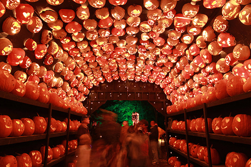 Hand-carved Jack-o-lanters through a tunnel