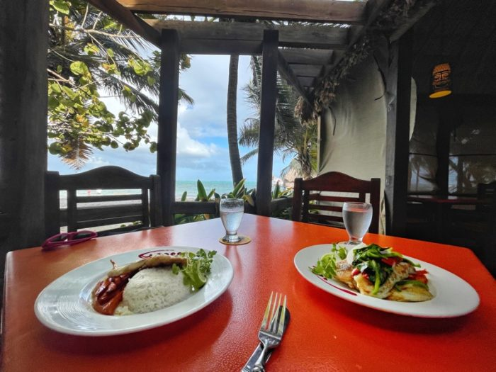 Photo of two fish dinners with an ocean view in the background.